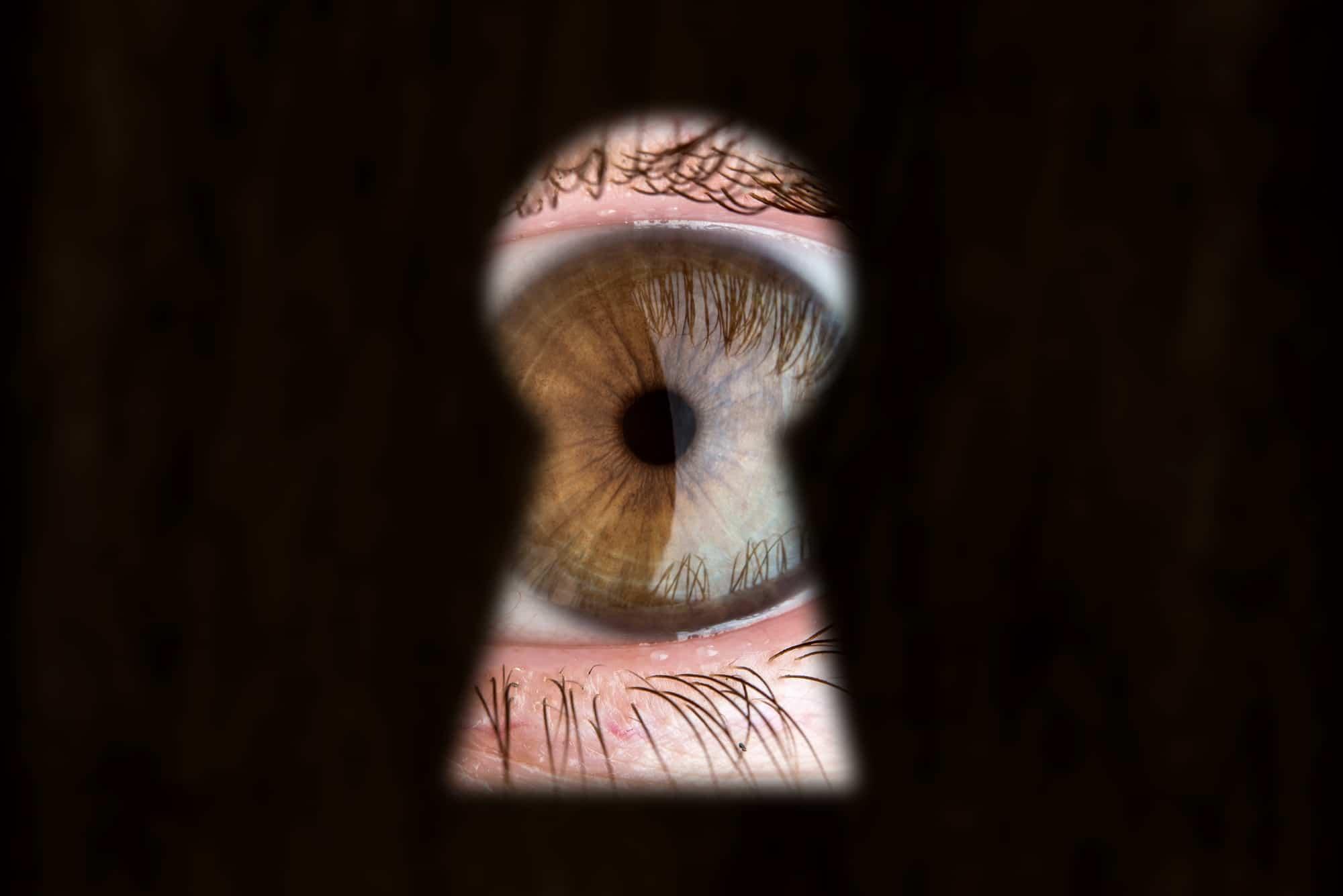 עדשות רשת למשקפיים – אופטיקה יפעת אופטומטריסטית מוסמכת